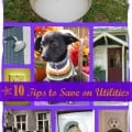 10 Tips To Save On Utilities