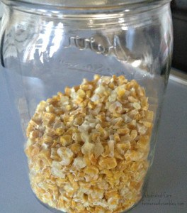 Dried Corn In A Jar WM