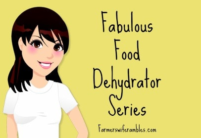 A clipart girl on a yellow background with the words fabulous food dehydrator series