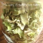 Dried Celery Makes It Easy To Add Vegetables To Your Meals
