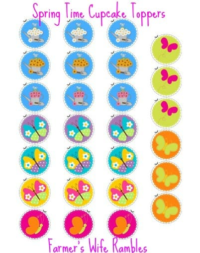 Flower & Butterfly Cupcake Toppers