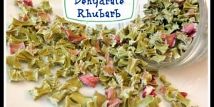 Dehydrate Rhubarb Instead Of Wasting Your Surplus
