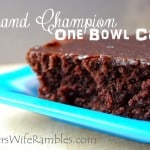Grand Champion One Bowl Easy Chocolate Cake Recipe