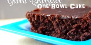 Grand Champion One Bowl Easy Chocolate Cake Recipe