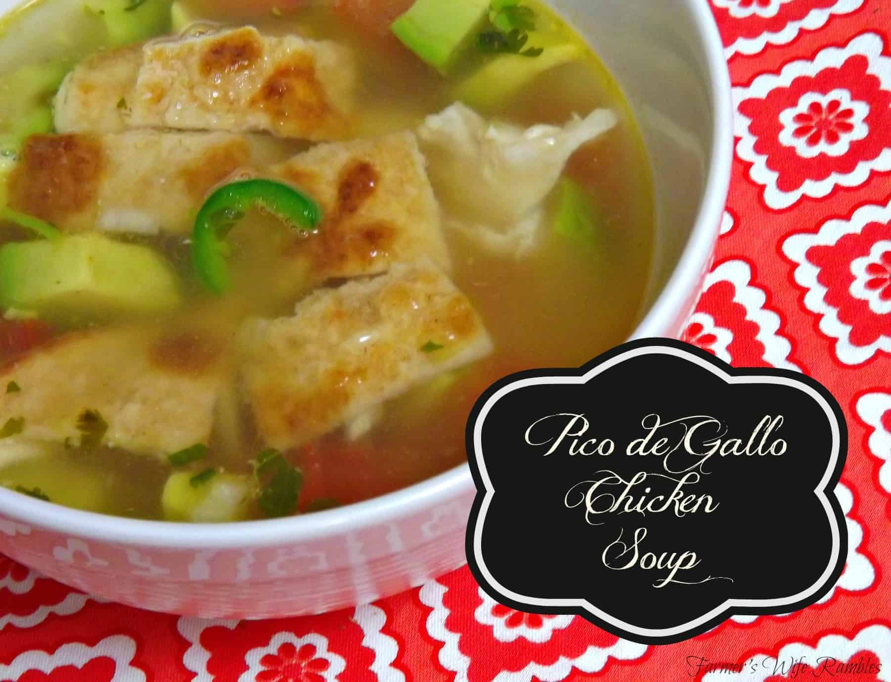 Pico De Gallo Chicken Soup