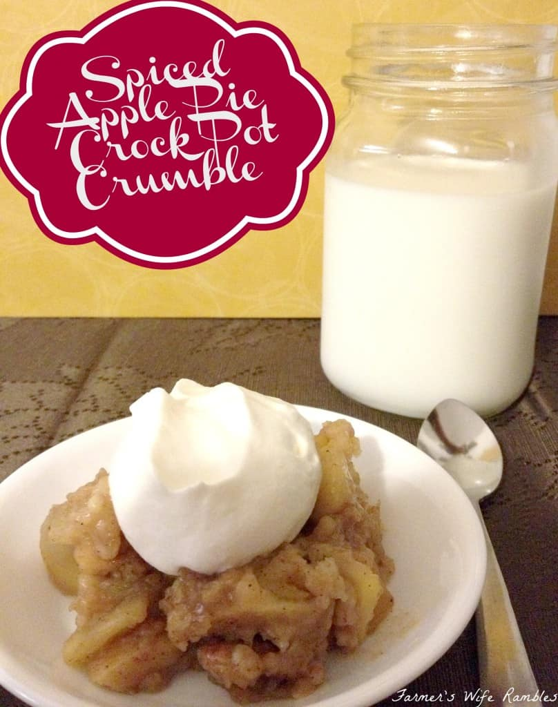 Easy Spiced Apple Crock Pot Crumble