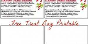 Candy Cane Seeds Treat Bag Topper Free Printable