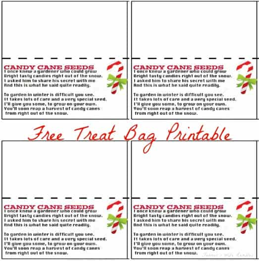 Candy Cane Seeds Free Treat Bag Topper