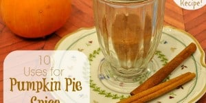 10 Pumpkin Pie Spice Uses + Recipe