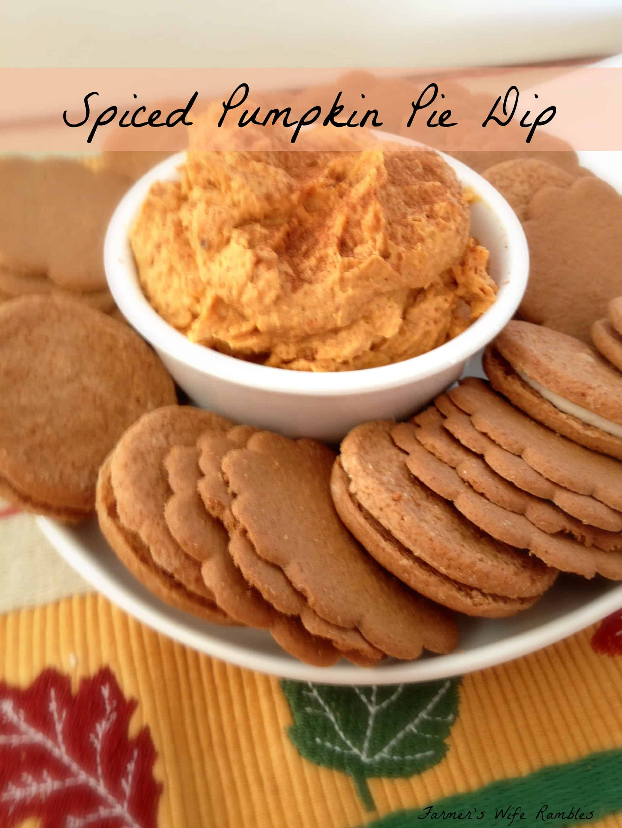 Easy Spiced Pumpkin Pie Dip - Farmer's Wife Rambles