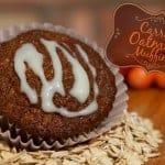 Carrot Oatmeal Muffin Recipe