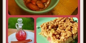 18 Rhubarb Recipes And Storage Tips