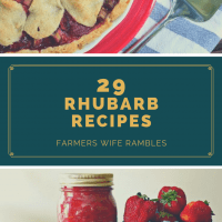 Rhubarb Recipes And Storage Tips