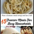 15 Freezer Meals For Busy Households - Farmer's Wife Rambles
