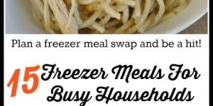 15 Freezer Meals For Busy Households