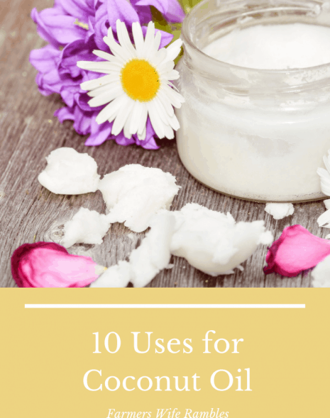 Title photo with a mason jar of coconut oil surrounded by fresh flower petals on a gray background.
