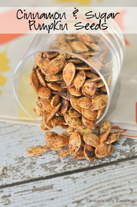 Cinnamon & Sugar Roasted Pumpkin Seeds