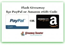 Flash Giveaway Logo