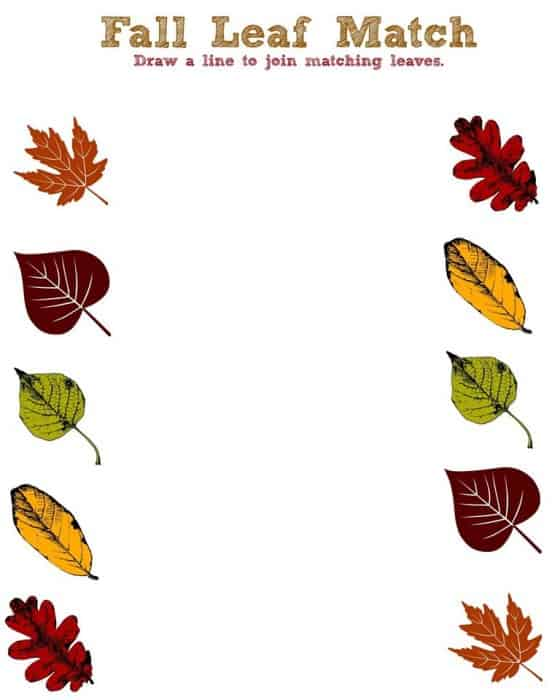 Fall Worksheets - Fall Leaf Match Printable
