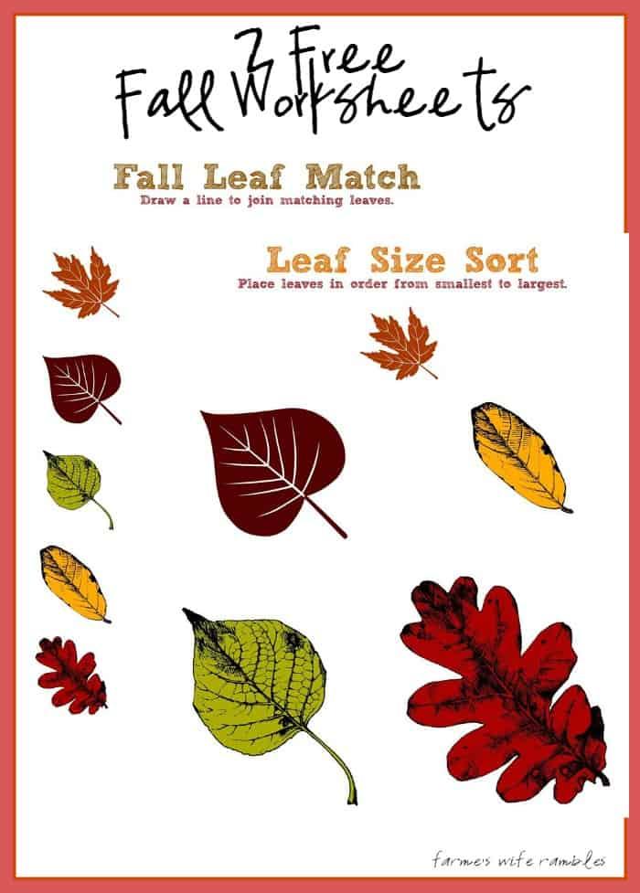 Free Fall Worksheets Printables