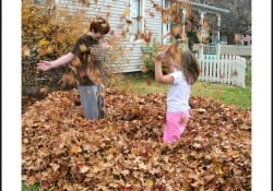 Family Activities for Fall That Won't Break the Bank