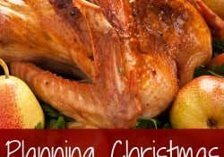 Planning Christmas dinner on a budget never seems easy. There's the cost of food and the time you spend making it. However, the holidays seem to suck out any penny you own. Check out these tips for learning to plan Christmas dinner on a budget. - Farmer's Wife Rambles