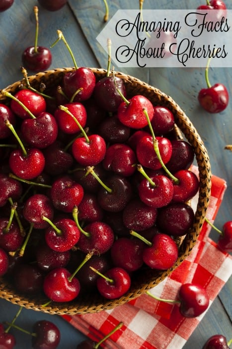 The next time you look at a cherry, you'll appreciate it a little more because of these amazing facts about cherries. - Teaspoon Of Goodness