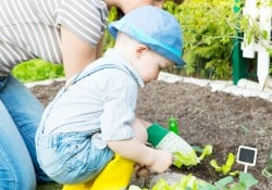When it comes to gardening with kids though, what your kid learns from this simple family activity far surpasses what you could instill within them with any other activity. - Farmer's Wife Rambles