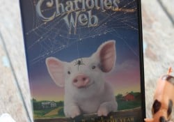 charlottes web family movie night