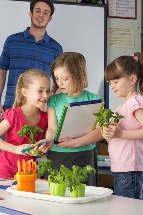 Girls learning about plants in school class