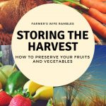 Storing the Harvest: Ways You Can Preserve Your Fruits and Veggies