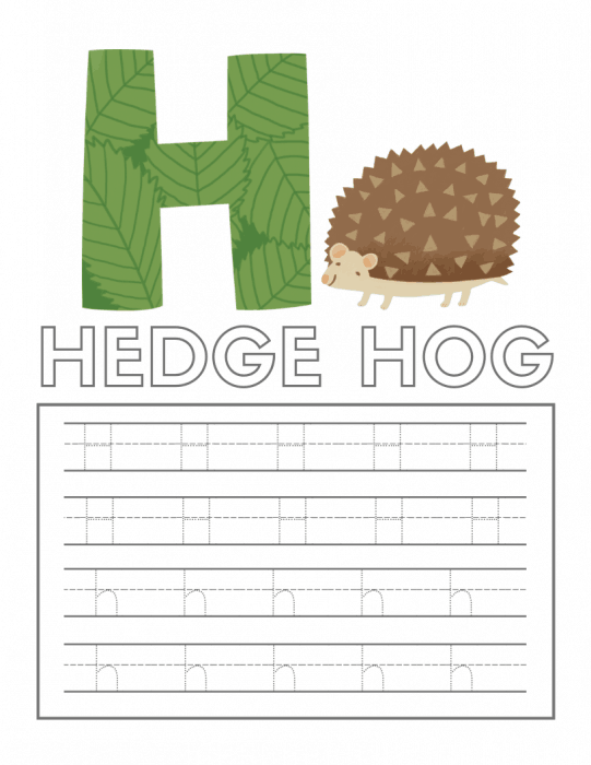 Alphabet tracing worksheet with the letter H and a hedgehog on it.
