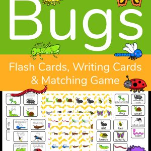 3 in 1 Insect Activity Sheets Cover with bugs and samples of matching game cards, writing cards and insect flashcards
