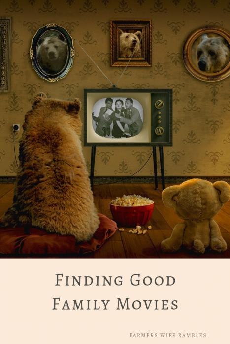 Stuffed animals watching TV