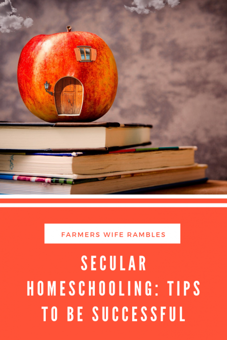 Picture of a school house made of an apple on top of books Secular homeschooling